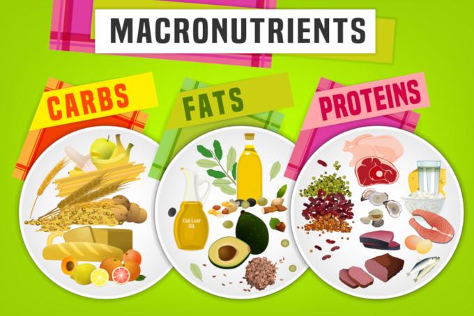 食事で摂取できる三大要素を理解しよう