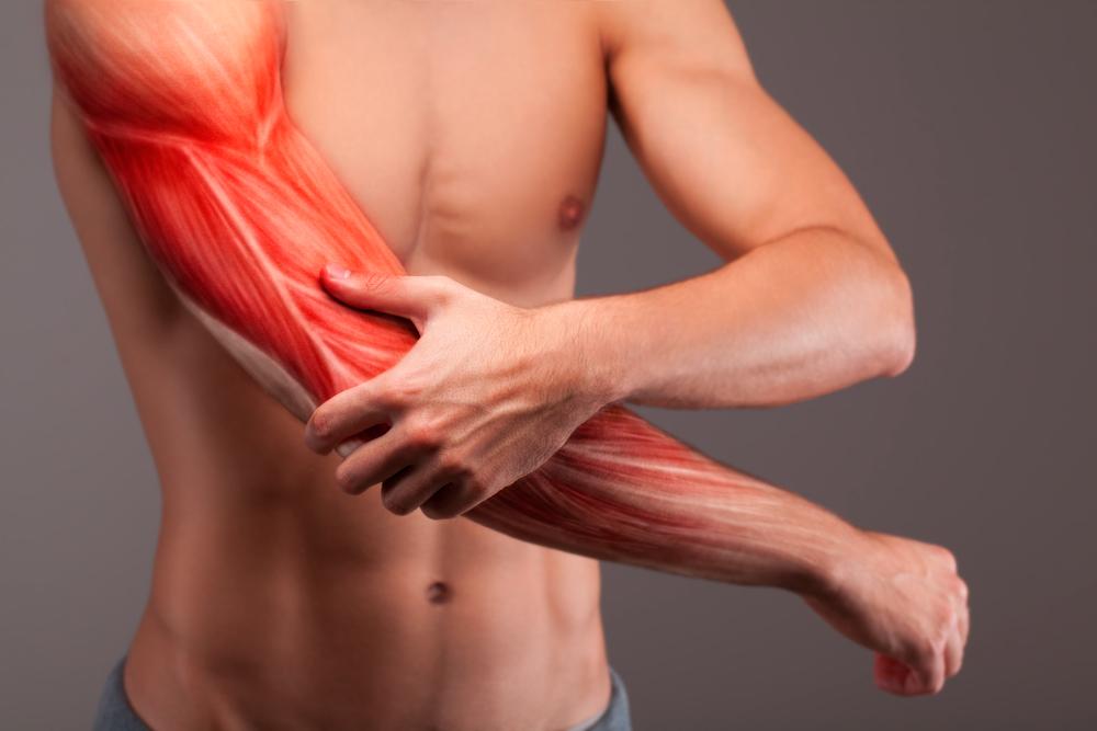 壊れた筋肉の回復について