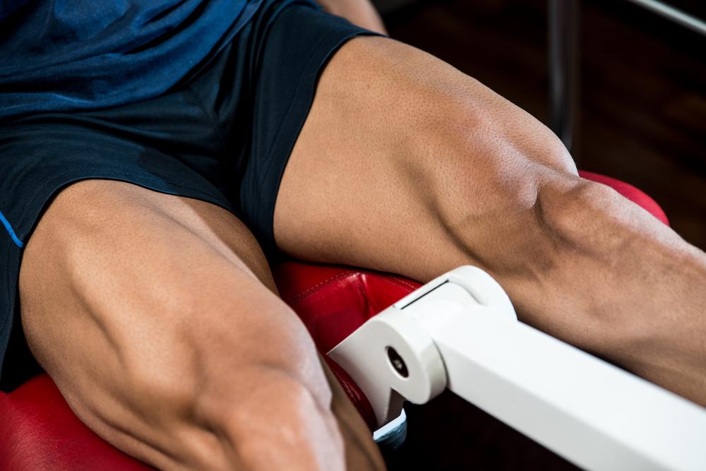 トレーニングで太くなるのは速筋繊維