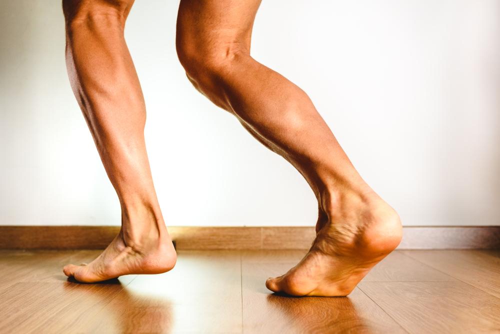 遅筋繊維の割合が多い筋肉はトレーニング効果が現れにくい