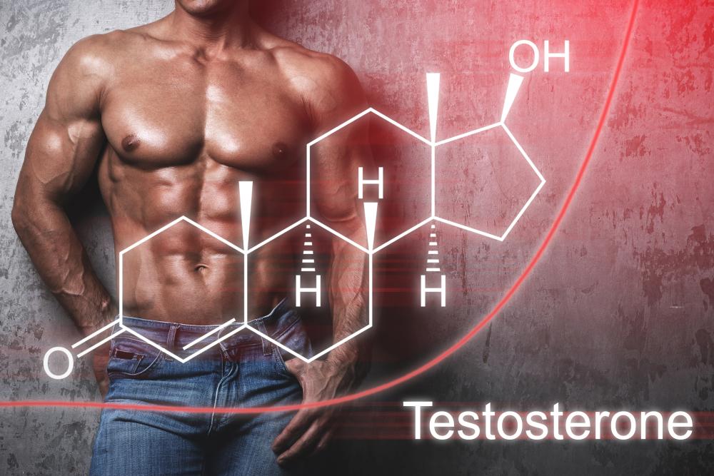 モテホルモンと言われる「テストステロン」を効果的に分泌させる方法